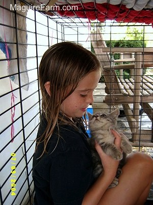 A little girl inside of a dog crate holding a little gray kitten that is looking back at her.