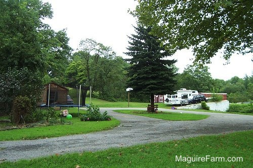 A paved driveway turnaround with an island that has a big tree in the middle. There is a basketbal rim next to the driveway, a trampoline on the field adjacent to the driveway, a brown cedar shed, a red barn, a 1996 black Toyota Land Cruiser and a white RV camper.