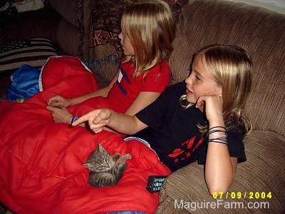 Two blonde girls sitting on a brown couch with a red sleeping bag across their legs. On the sleeping bag is a tiny gray kitten.