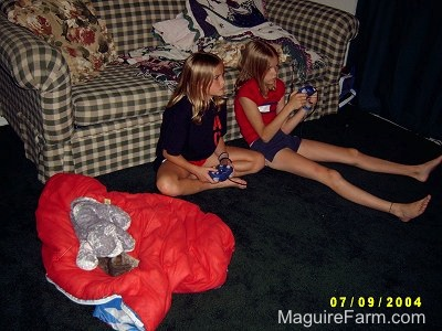 Two blonde girls leaning against a plaid green and white couch on a green carpet playing Nintendo. There is a red sleeping bag next to them that has a stuffed plush toy and a little gray kitten on it.