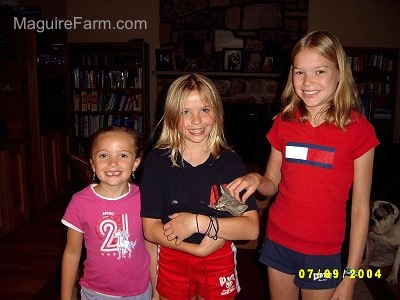 Three kids standing in a living room smiling. The girl in the middle is holding a little gray kitten in her shirt. The girl on the right is petting the kittens head.
