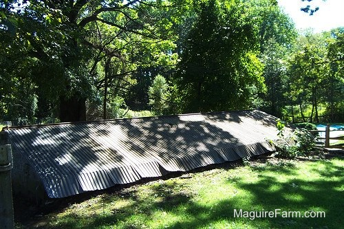 The tin rroof of the springhouse with a split rail fence and an in-ground swimming pool in the background
