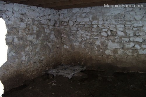 The inside corner of a stone wall in the springhouse